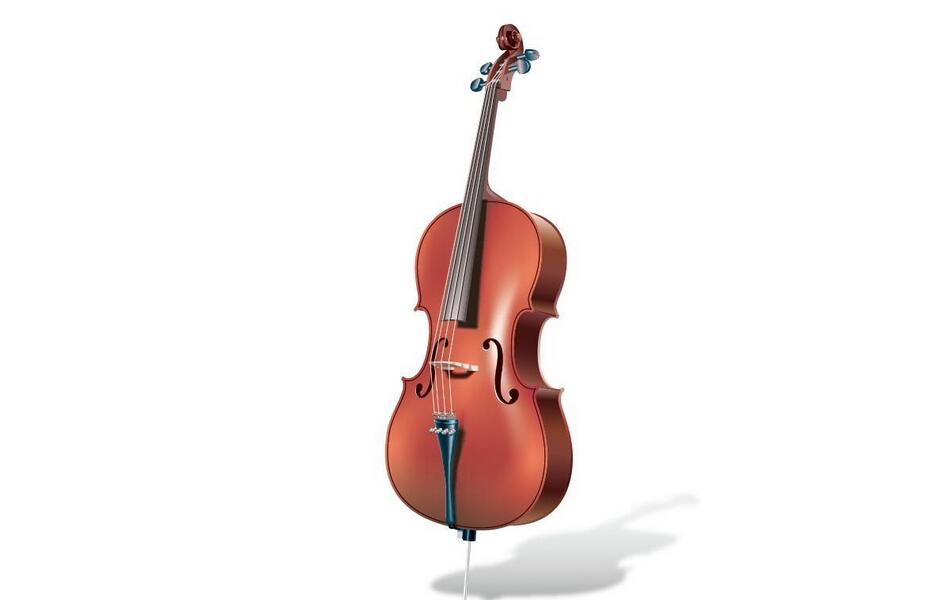 大提琴知识攻略大全 大提琴与小提琴的区别
